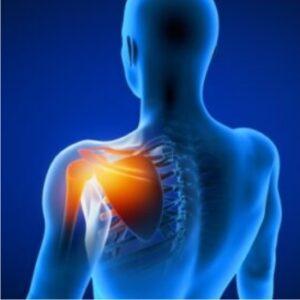 Shoulder surgery Saishree Hospital Pune